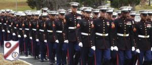 Feste Usa: Veterans Day