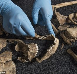38b608b900000578-3803648-analysis_of_skeletons_found_in_a_roman_cemetery_in_south_london_-a-10_1474619887035